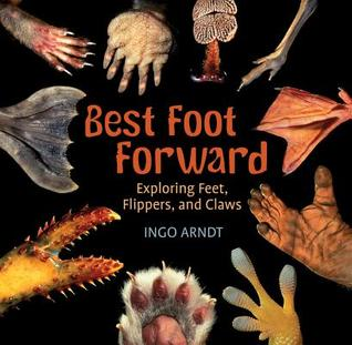 Best Foot Forward: exploring feet, flippers, and claws book cover